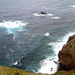 800px-Madeira_küste-Hedwig Storch